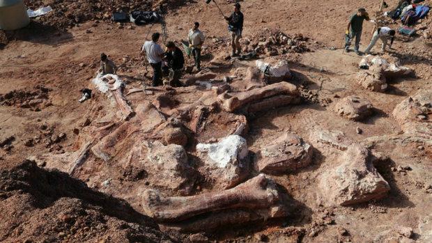 66 мільйонів років тому Землею вешталися дев'ятитонні машини для вбивств: вчені показали доісторичного монстра