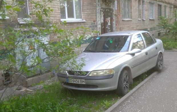 """Уставшие киевляне проучили оленя парковки: """"Не умеешь парковаться - воняй"""""""