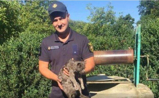 Сотрудники ГСЧС спустились к колодцу и спасли кота, cv.dsns.gov.ua