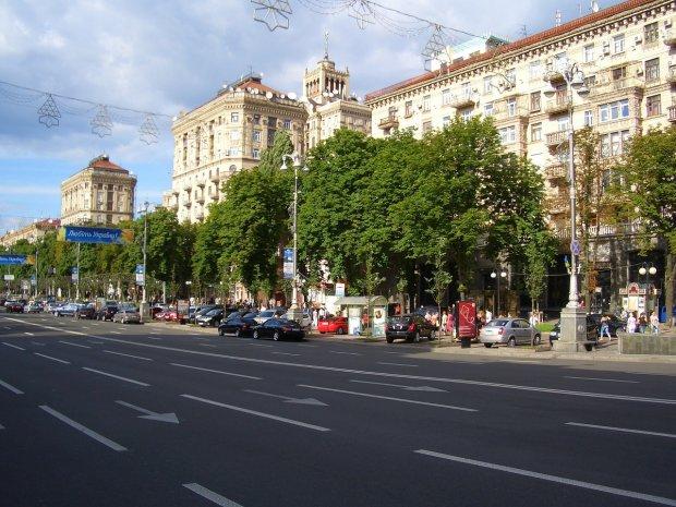 Визитная карточка Киева расцвела на глазах у всей страны: чарующие кадры аномалии