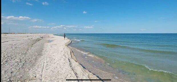 Нашестя медуз у Кирилівці вигнало туристів з моря