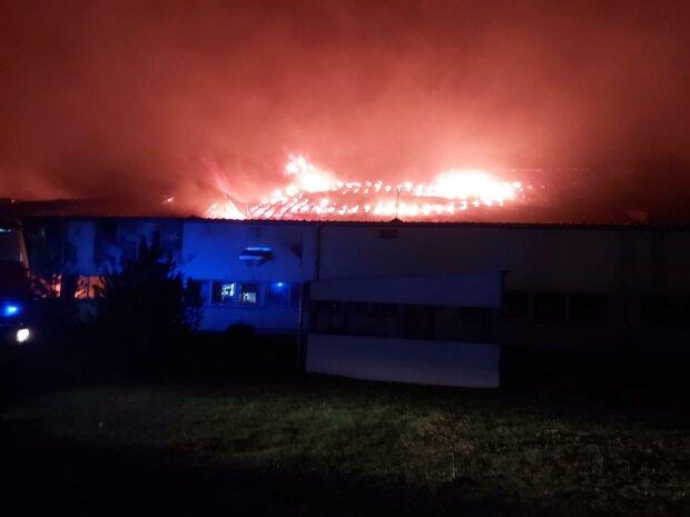 Пожар на Мукачевской лыжной фабрике «Тиса», фото dsns.gov.ua