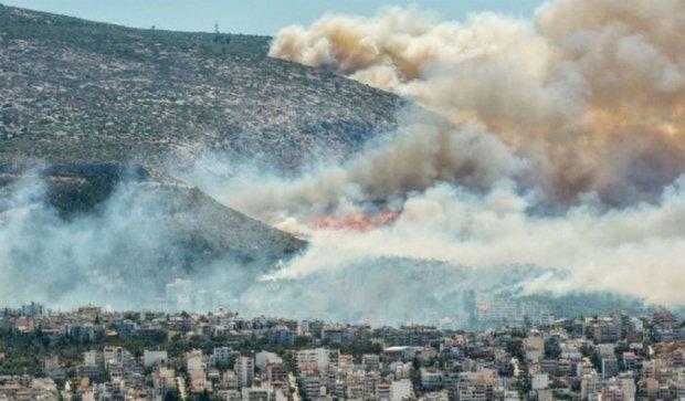 Грецию охватили масштабные лесные пожары (видео)