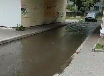 """По Харкову розтеклися річки нечистот, комунальники Кернеса повісили прищіпки на носа: """"От л*йно!"""""""