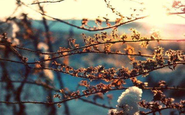 Погода у березні: синоптики розповіли, коли в Україну прийде весна