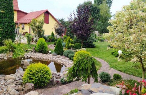 Женщина создала сад дома: te.20minut.ua