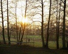 Погода в Украине, фото: wallhere.com