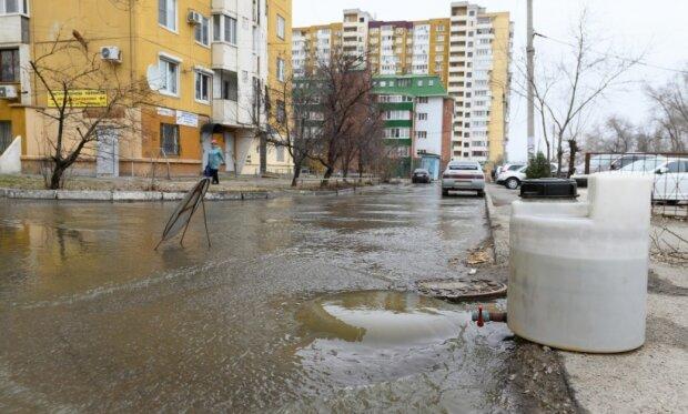 """Вінниця потопає в нечистотах, """"туалет"""" - просто під ногами: шокуючі кадри """"із запашком"""""""