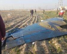 Крушение самолета МАУ в Иране, фото: Українські новини