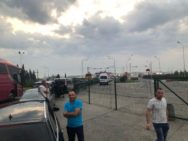 На Львівщині митники виявили моторошну знахідку: 13 повзучих гадів у мішках, відео