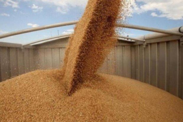 Украинские аграрии будут зарабатывать на поставках в Иран
