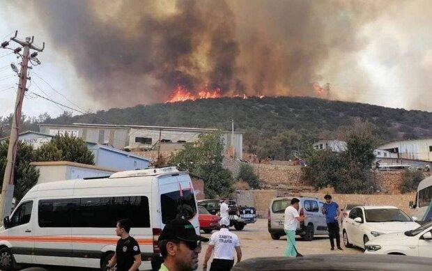 Пожары в Турции, фото: Telegram