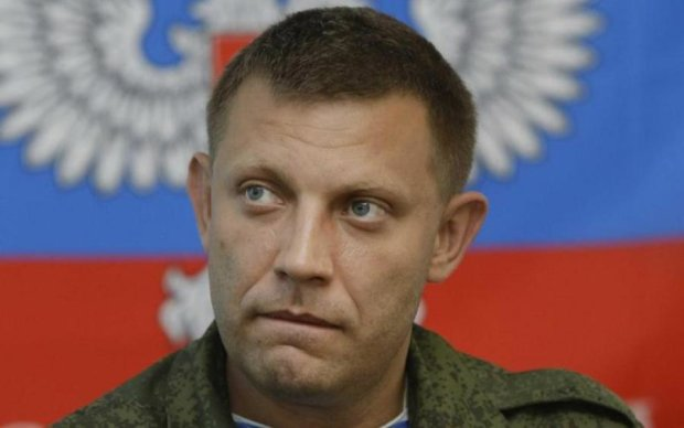 ДНРовские тролли в панике: Захарченко убежал из Донбасса