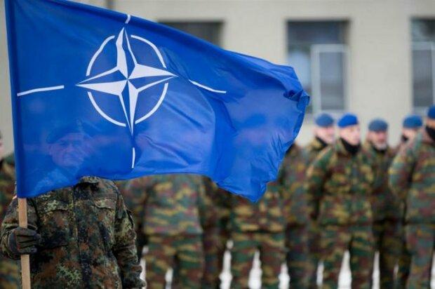 Україна в НАТО: названо 5 умов, які забезпечать нам дорогу в Альянс