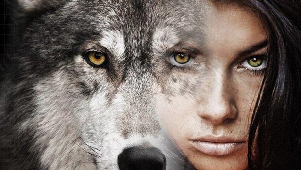 Жінка-вовк налякала ціле місто: проникала на чужу територію і переслідувала людей