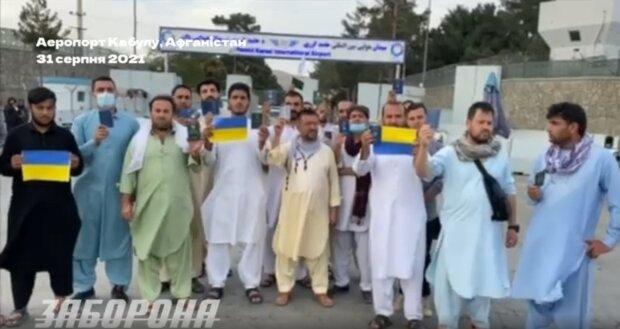 Украинские граждане просят эвакуировать их из Кабула, скриншот из видео