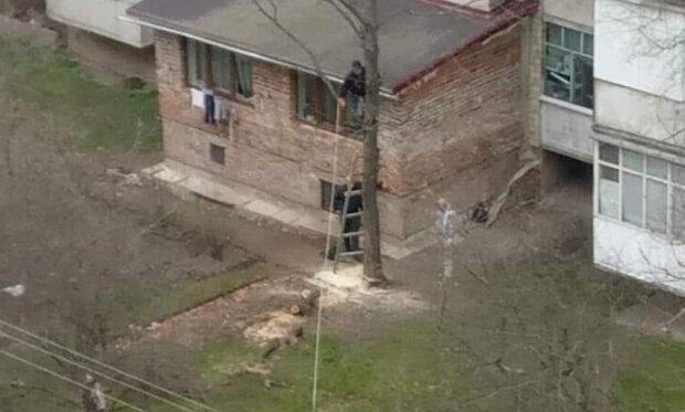 """Франківчанин вирішив прибудувати балкон і """"трохи"""" захопився, сусіди очманіли: """"Все нормально?"""""""