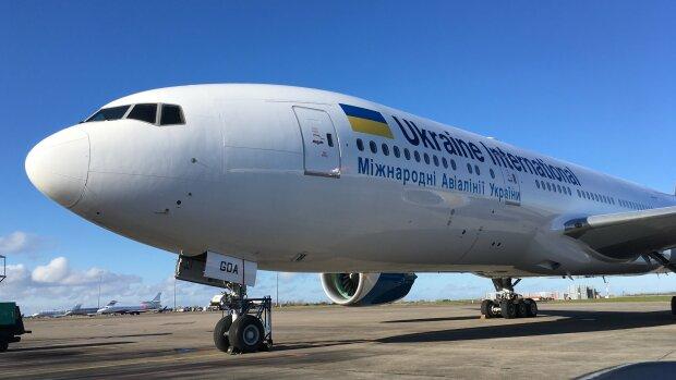 """МАУ устроила украинцу жаркий перелет, пассажиры в ярости: """"Мяу как всегда"""""""