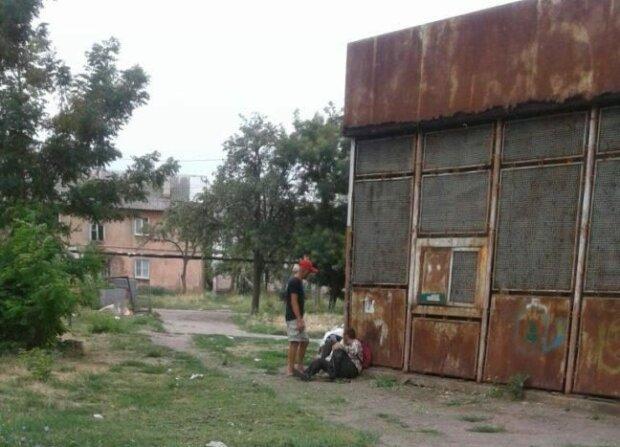 У Бердянську безпритульні окупували дитячий майданчик, не виженеш і поганою мітлою: городяни нажахані, дикі кадри