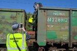 """""""Заєць"""" у вагоні з вугіллям, фото:kp"""