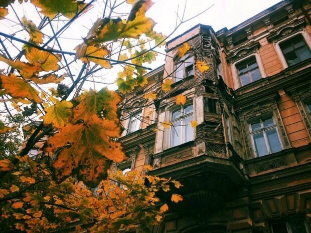 Одесса столкнется с причудами осени: туман и солнце поборются за власть над городом 10 ноября