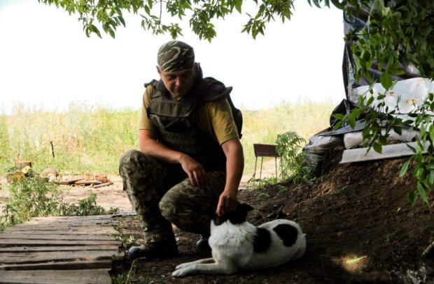 Донбас, фото: facebook.com/pressjfo.news
