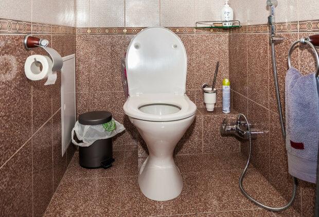 Один пожирав іншого: дівчина пішла вночі до туалету, коли з унітазу вилізли два монстра