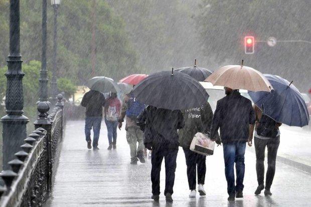 Погода в Харькове на 27 июля: выходные коту под хвост, доставайте зонтики