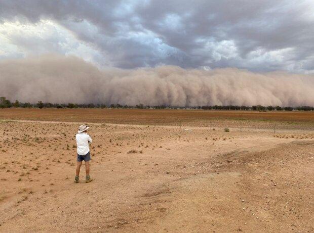 Пыльные бури в Австралии, фото: jen_browning / Twitter