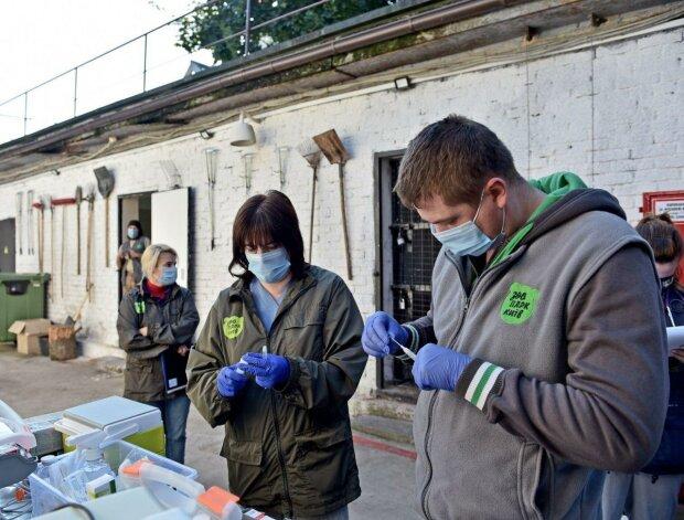 """В київському зоопарку лікарі ризикнули життям заради клишоногих: """"Пробули у клітці 20 хвилин"""""""