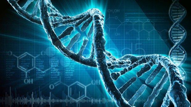 Це змінює все: вчені виявили унікальний вид Homo sapiens, питань більше, ніж відповідей