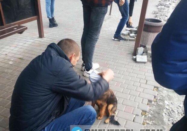Мелитополь, фото: Социальные сети