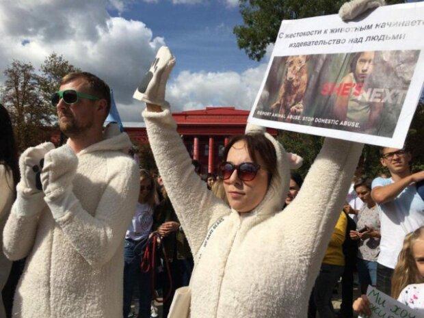 Защитить слабых: тысячи украинцев вышли на Марш за животных, выдвинуты требования Зеленскому