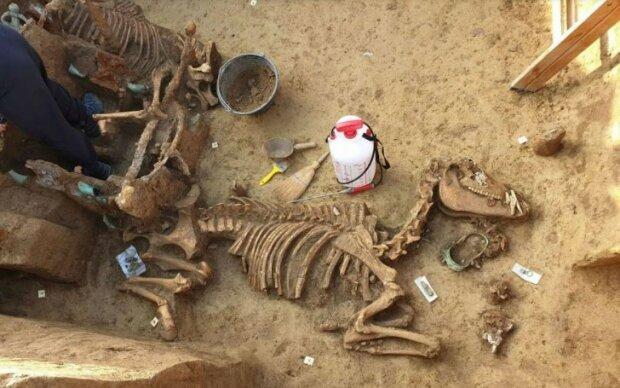 Археологи оторопіли від 2000-річної знахідки: вражаючі кадри