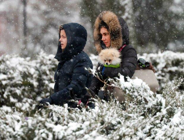 снегопад фото: reuters