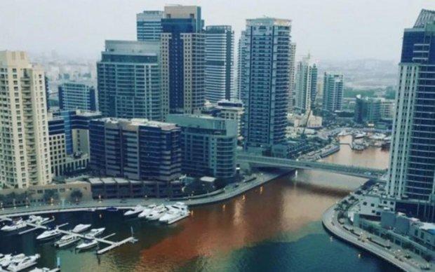 В Дубае река окрасилась в подозрительный цвет: стало известно про запах