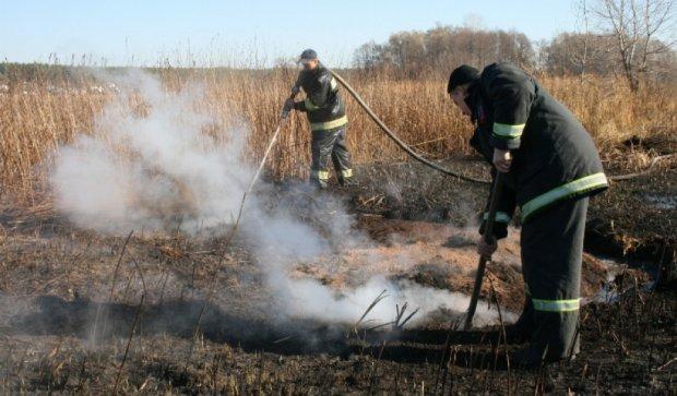 На Чернігівщині спалахнули торфовища