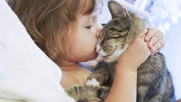 Мама на минутку отвлеклась: смелая кошка спасла жизнь младенцу