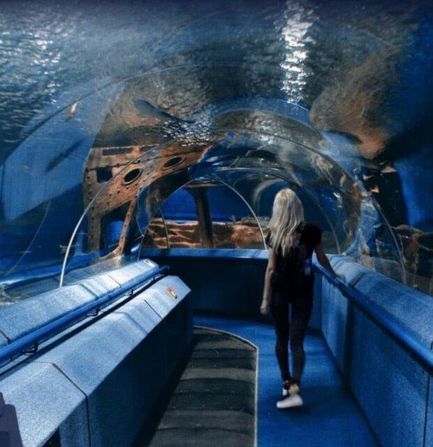 Открытие океанариума во Львове, фото с сайта