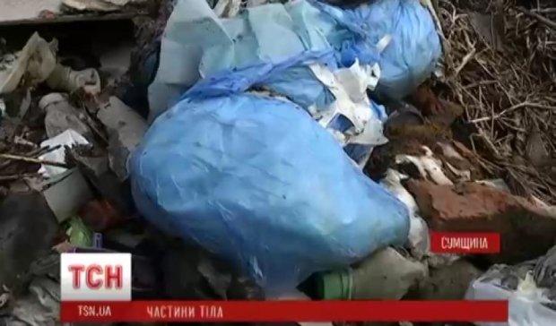 На Киевщине нашли человеческие останки