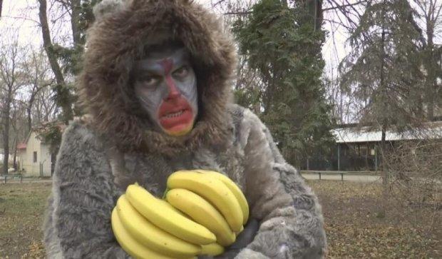 Директор одеського зоопарку зіграв у кліпі мавпу (відео)
