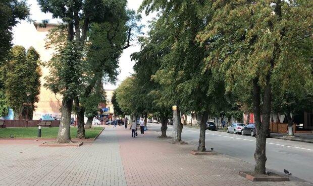 """Под Хмельницком построят современный  стадион - как """"Динамо"""" в Киеве"""