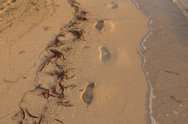 пляж, фото Pxhere
