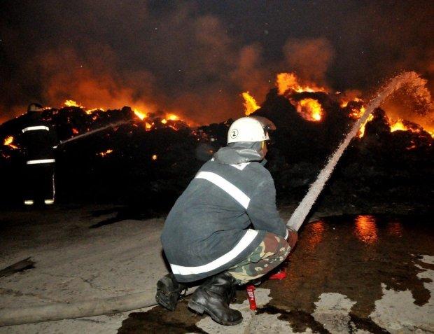 Одессу охватил гигантский пожар: огонь пожирает метр за метром, первые кадры