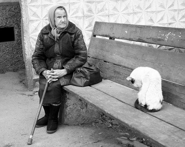 Одинокая пенсионерка не доедает и на последние деньги содержит приют: украинцев просят о помощи