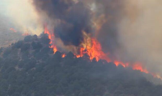 Пожара из-за глобального потепления, скриншот: YouTube