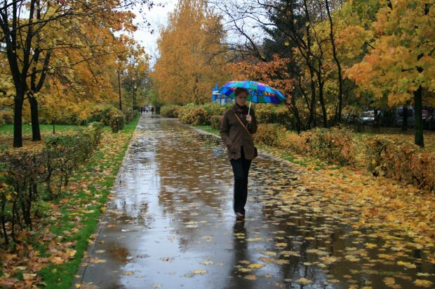 Одесса включила режим осенних дождей: синоптики рассказали, чего ожидать 26 октября