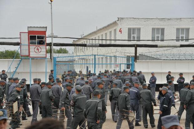Возле тюрьмы на Винниччине переполох, такого не видели даже бывалые копы: кадры дикого ЧП