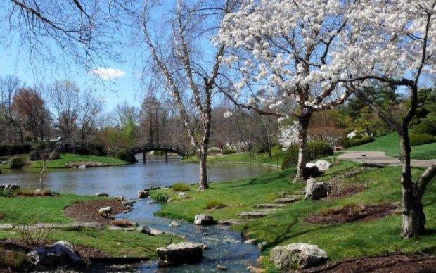Синоптики рассказали, когда украинцам ждать весны