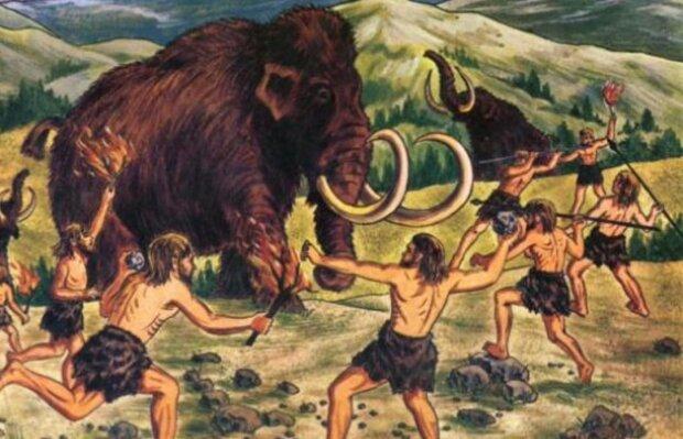 Їсти, щоб еволюціонувати — неандертальці виявилися талановитими дієтологами